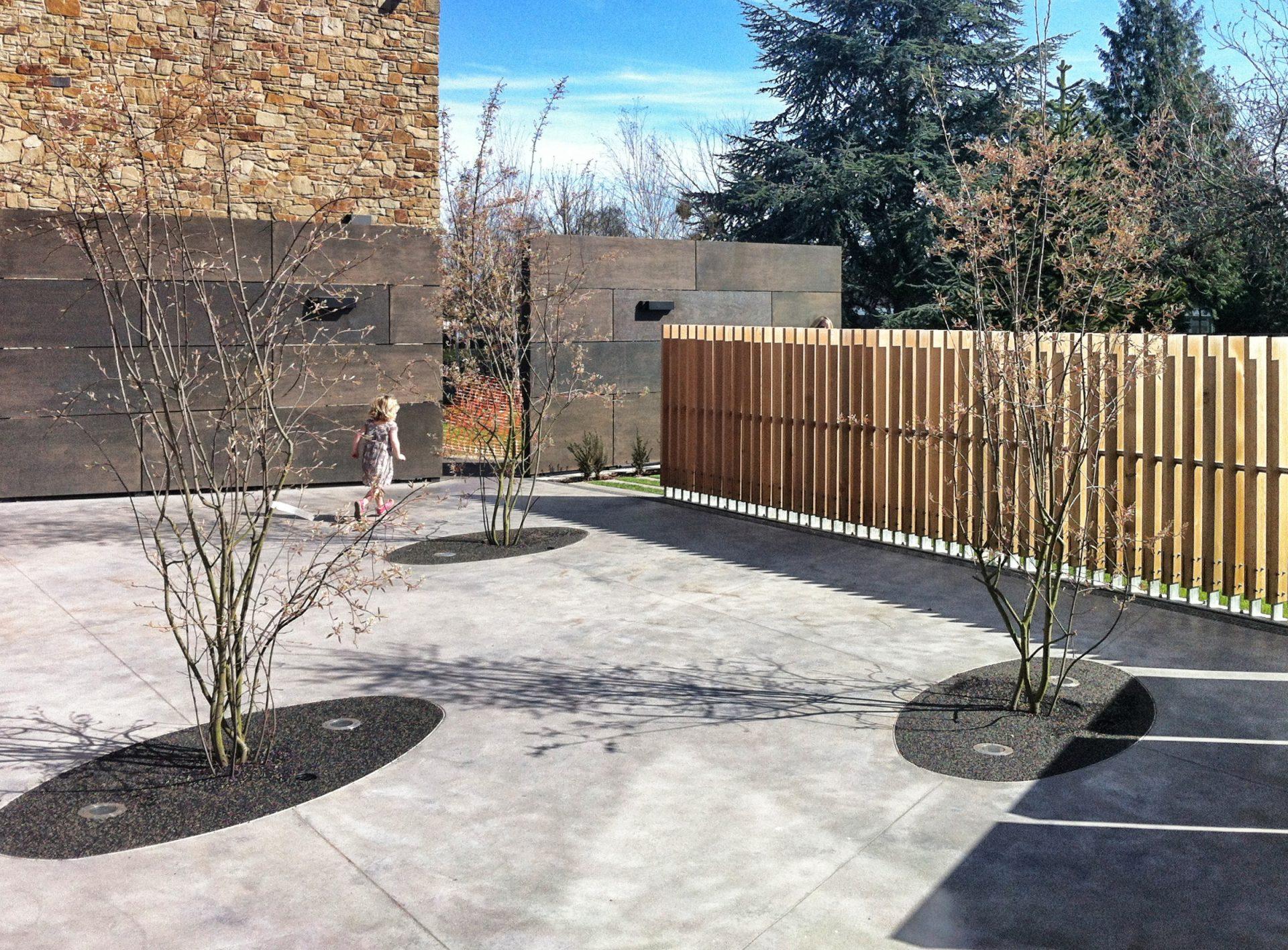 HCA The Arts Space Garden Cedar Fence Multi-Stem Trees