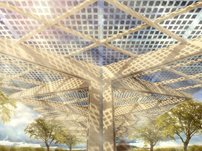EV charging hub canopy with timber structure and BIPV