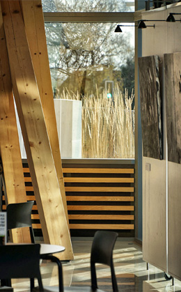 HCA Arts Space Timber Gallery Grass