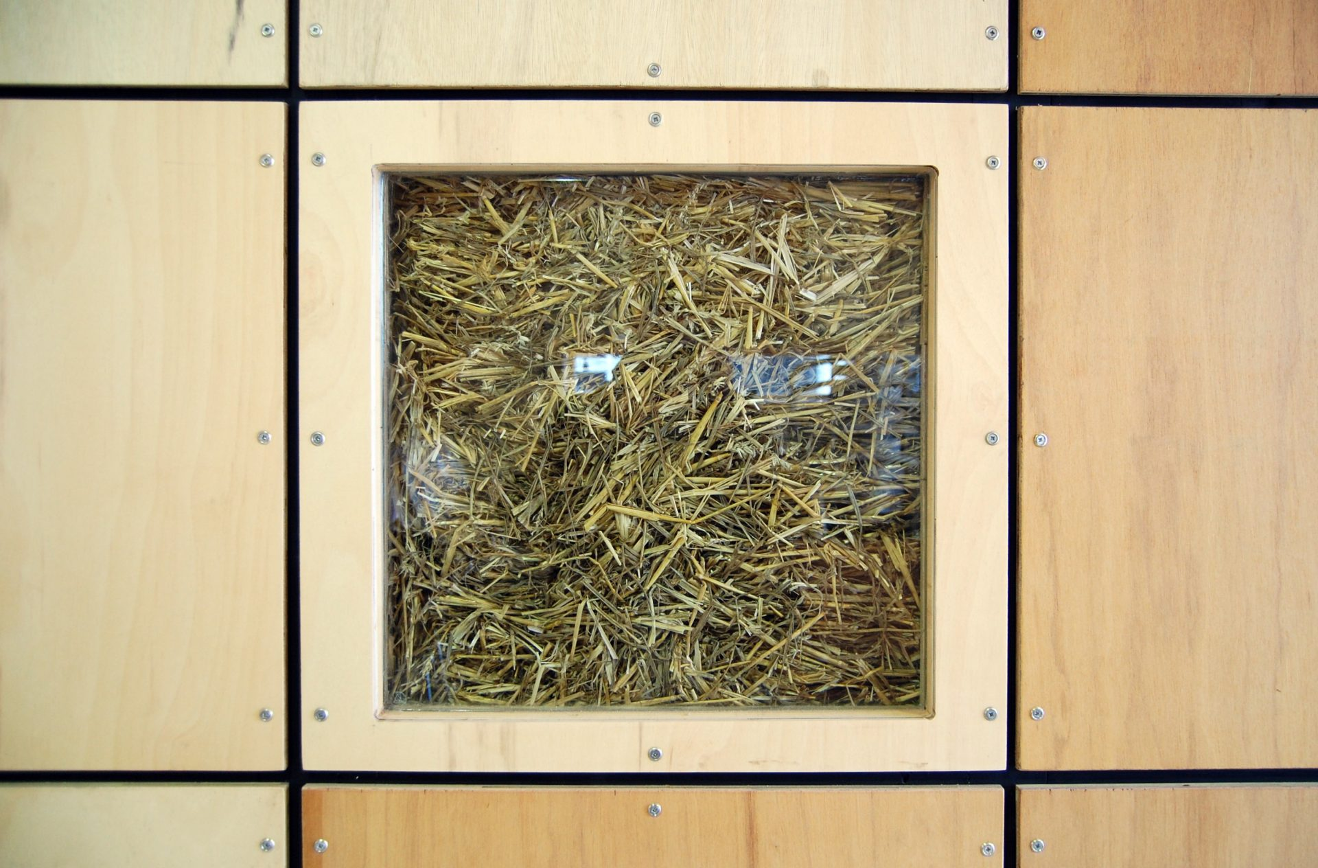 Straw Bale Cafe Glazed Truth Window in Plywood Wall
